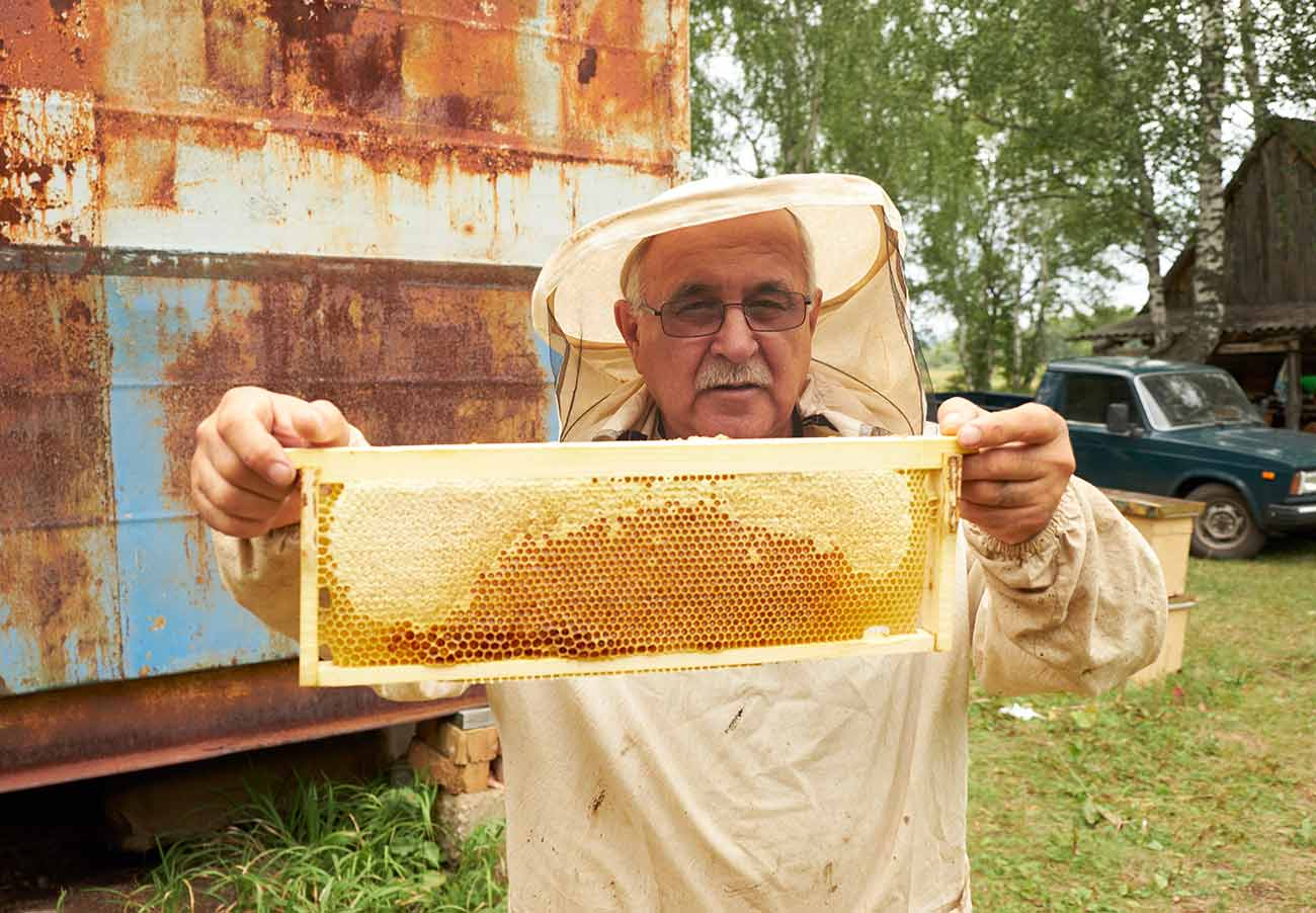 Sweet Honey Packs Fresh Raw and Unfiltered